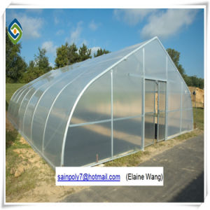 Nft Nutrient Film Hydroponics System Greenhouse pictures & photos