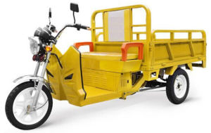 Electric Tricycle 1.3m Cargo 1000W