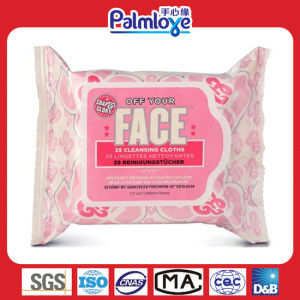 Skin Care Wipes, Feminine Wipes pictures & photos