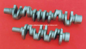 Forged Steel Crank Shaft with Different Sizes (FCS-01)