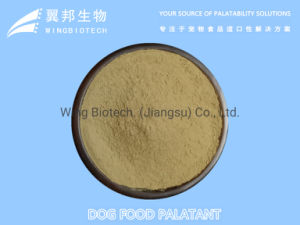 Wholesale Powder Food