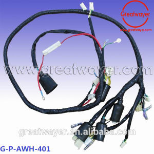 China 6 Pin Socket Connector Loom Motorcycle Wiring Harness - China Wire  Harness, Auto Wire Harness  Jiangxi Greatwayer Engine Wire Harness Co., Ltd