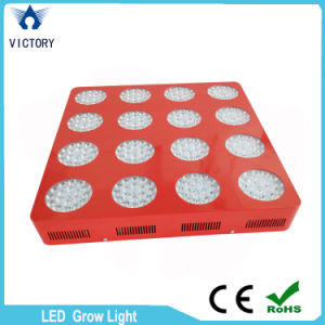 High Power 1000W Full Spectrum LED Grow Light for Greenhouse pictures & photos