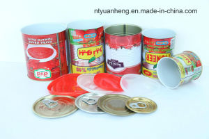 Wholesale Canned Tomato Paste Tomato Sauce with Good Quality pictures & photos