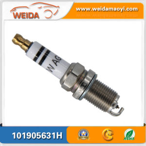 Car Brand New Part Spark Plug OEM 101905631h for Audi