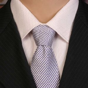 Private Label 100% Silk Woven Neck Ties Men pictures & photos