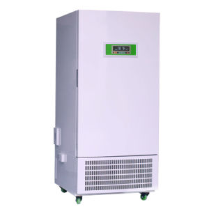 Hot Selling Good Price Insulation Constant Humidity Box