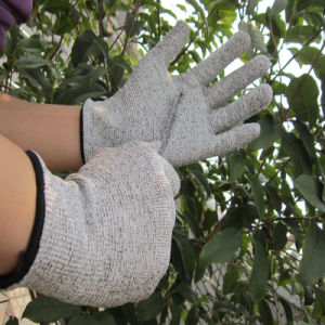 Food Industry Gloves Cut Resistant Safety Work Hand Protection Glove pictures & photos