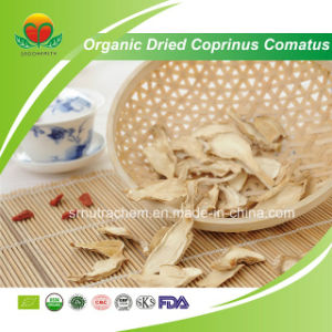 Manufacture Supplier Organic Dried Coprinus Comatus pictures & photos