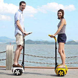 Mini 2-Wheel Electric Scooter