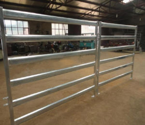 Australia Oval Rail Horse Yard Panel/Cattle Yard Panel pictures & photos