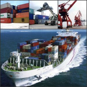 Container Sea Freight/Freight Forwarding Company to Dubai UAE pictures & photos