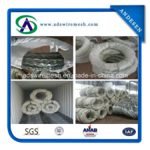 High Quality From Good Factory Concertina Razor Wire pictures & photos