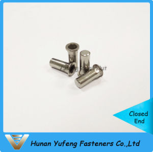 Stainless Steel Flat Head Inside&Outside Hexagon Rivet Nut with Closed End pictures & photos