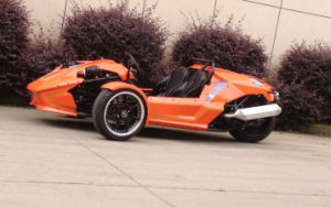 Three Wheels 250cc Ztr for Adult pictures & photos