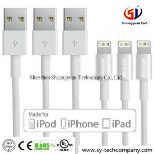 China 3ft 8 Pin Lightning Cable Usb