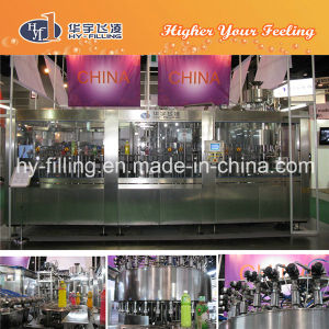 Pet Bottle Aloe Vera Hot Bottling Machine pictures & photos