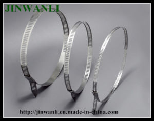 Ladder Single Barb Lock Type Stainless Steel Cable Tie pictures & photos