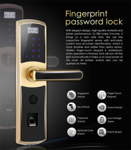 Reversible Handle Fingerprint Door Lock with Mechanical Key (UL-780) pictures & photos