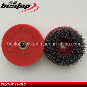 D110mm Silicon Carbide Stone Diamond Brush for Mexician Market pictures & photos