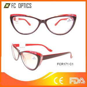 Eyewear Frame with Clip on Glasses pictures & photos