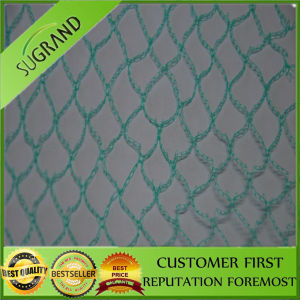 Agricultural HDPE Plastic Vineyard Anti Bird Netting for Sale pictures & photos