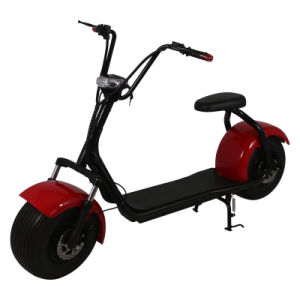 Tow Wheel Fashion Style Electric Scooter for Young Person 1000W Motor