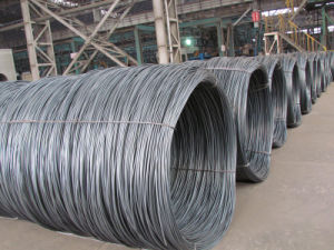 SAE1008 / 5.5mm Hot Rolled Steel Wire Rod pictures & photos