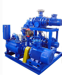 Jzj2b1200-2.1 Roots Water-Ring Vacuum Pump