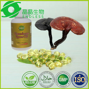 Top Quality Pure Oil Ganoderma Lucidum Mycelium pictures & photos