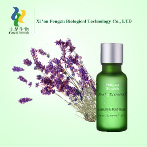 100% Pure Lavender Oil, Organic Nature Lavender Essential Oil