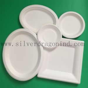 Sugarcane Pulp Material Disposable Paper Tray for Food Use pictures & photos