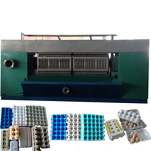 Big Paper Egg Tray Machine with High Capacity Competitive Price