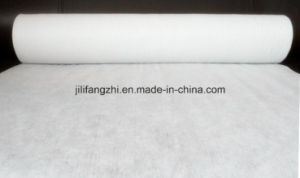 Hot Selling Nonwoven Fabric/Nonwoven Bag/Polyester Fabric