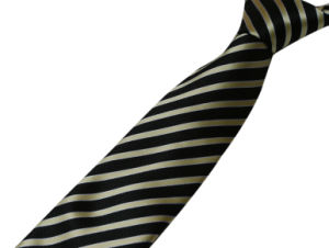 Fashion Necktie/Neckwear pictures & photos