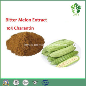 Momordica Charantia Linn Fruit Extract Powder 10: 1 / 1%-10% Charantin