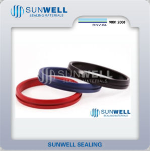 IX Seal Ring Coating with PTFE by Different Colors pictures & photos