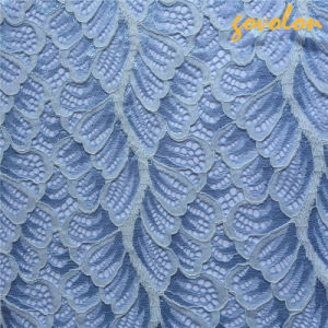 Elastic Polyester Lace with Multi Colour pictures & photos