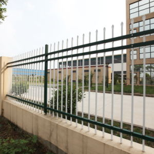 30 Years Colorfast Security Fence and Construction