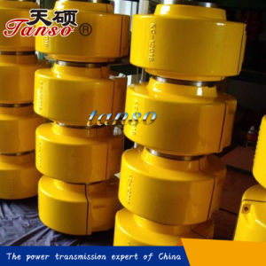Standard Export Flexible Chain Coupling pictures & photos