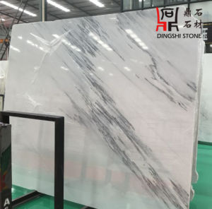 Natural Stone Dark Jade White Marble Slabs for Countertop/Flooring Tiles/Wall Clading