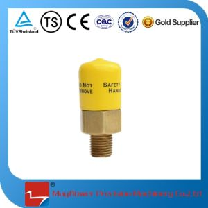Low Temperture Safety Valve Crogenic Safety Valve pictures & photos