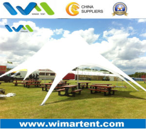 Star Canopy with Twin Peak Roof for Catering, Restaurant