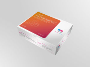 One Step Strep B Antigen Diagnostic Kit