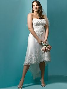 Plus-Size Tea Length Wedding Dress and Wedding Gown (BIG007)