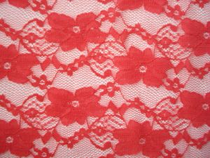 Lace Fabric (HTY110422-1)