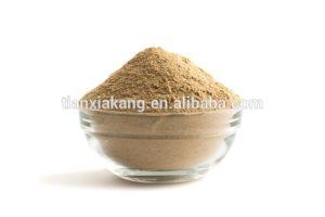 China Green Coffee Bean Extract Powder Chlorogenic Acid 50 Pure