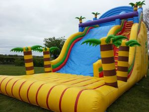 Kids Jungle Big Inflatable Outdoor Slide pictures & photos
