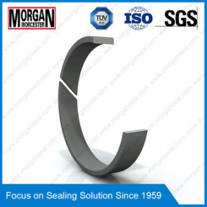 Fra/Gp Profile PTFE/Teflon Piston Guide Ring Seal/Wear Ring pictures & photos