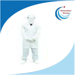 Antistatic Cleanroom Clothes/ESD Garment